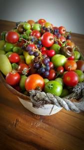Tomat, paprika, chili och vindruvor från egen odling
